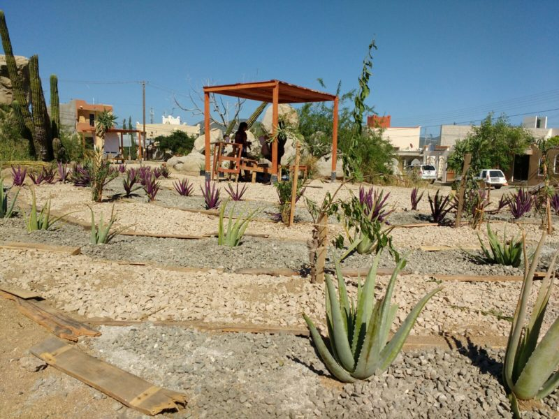 http://new.implanloscabos.mx/parques-de-bolsillo/